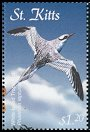 Clements: Red-billed Tropicbird (Phaethon aethereus)(Repeat for this country)  new (2001)