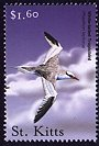 Clements: Red-billed Tropicbird (Phaethon aethereus) SG 605 (2001)