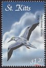 Clements: Red-footed Booby (Sula sula) new (2001)